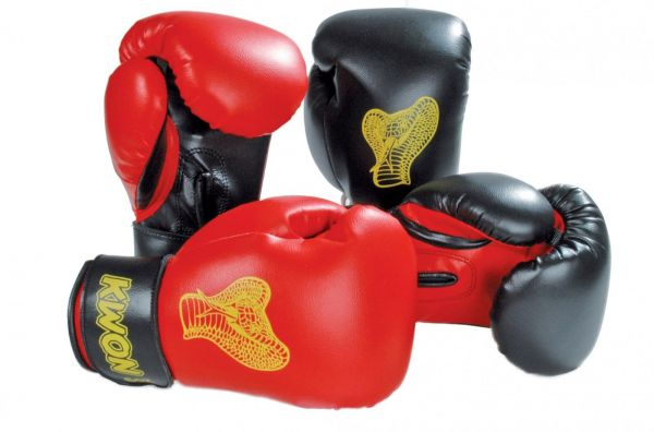 Kinder Boxhandschuhe Cobra alle Farben